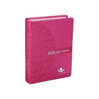BIBLIA SAGRADA - LETRA GRANDE - CAPA ROSA ESCURO - SBB