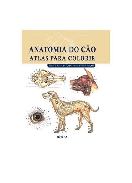 Livro - Anatomia do Cão - Atlas para Colorir - Kainer