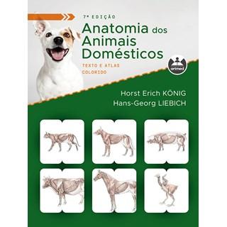 Livro Anatomia dos Animais Domésticos - König - Artmed