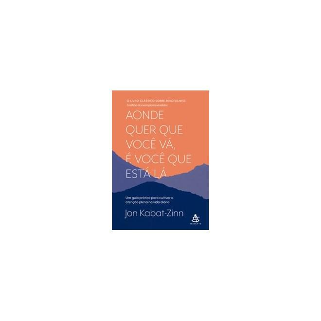 Livro - Aonde quer que você vá, é você que está lá - Kabat-Zinn 1º edição
