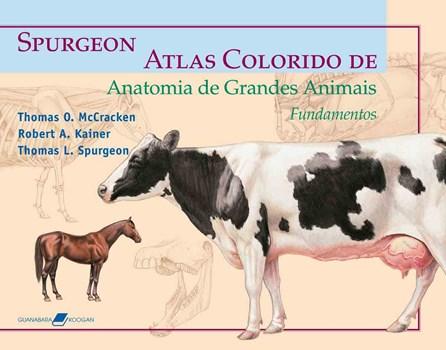 Livro - Atlas Colorido de Anatomia de Grandes Animais - Fundamentos - Spurgeon