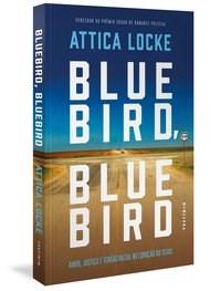 Livro Bluebird, Bluebird: Amor, justica e tensao racial no coracao d