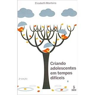 Livro - Criando Adolescentes Em Tempos Difíceis - Monteiro - Summus