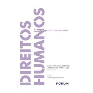 Livro - Direitos humanos - Edvaldo Pereira Sales 1º edição