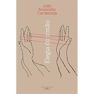 Livro - Elegia do irmão - Carrascoza