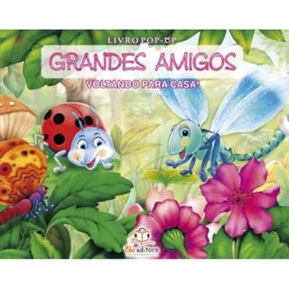 Livro - Grandes Amigos - Voltando Para Casa