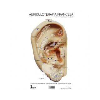 Livro - Mapa de Auriculoterapia Francesa - Bissiato