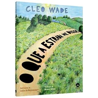 Livro O Que a Estrada me Disse - Wade - Galera