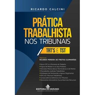 Livro Prática Trabalhista Nos Tribunais - Calcini - Jh Mizuno