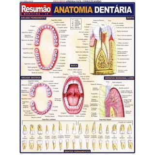 Livro - Resumão Anatomia Dentária