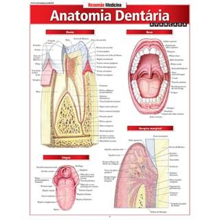 Livro - Resumão - Anatomia Dentária Avançada - Perez