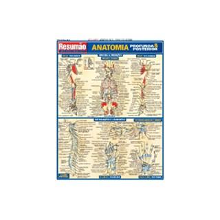 Livro - Resumão Anatomia Profunda & Posterior