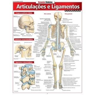 Livro - Resumão Articulação e Ligamentos Avançado  - Perez