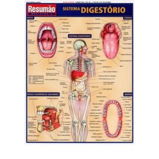 Livro - Resumão Sistema Digestório