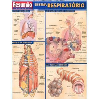 Livro - Resumão Sistema Respiratório - França