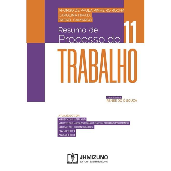 Livro Resumo de Processo do Trabalho - Rocha - Jh Mizuno