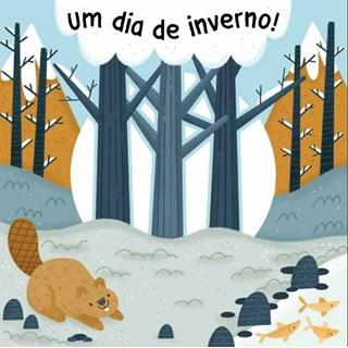Livro - Um Dia De Inverno - Libris