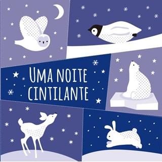 Livro - Uma noite cintilante